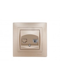 Компьютерная розетка BRAVO (5627) платина