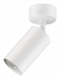 Акцентный светильник luxel GU10 IP20 белый (DLD-08W)